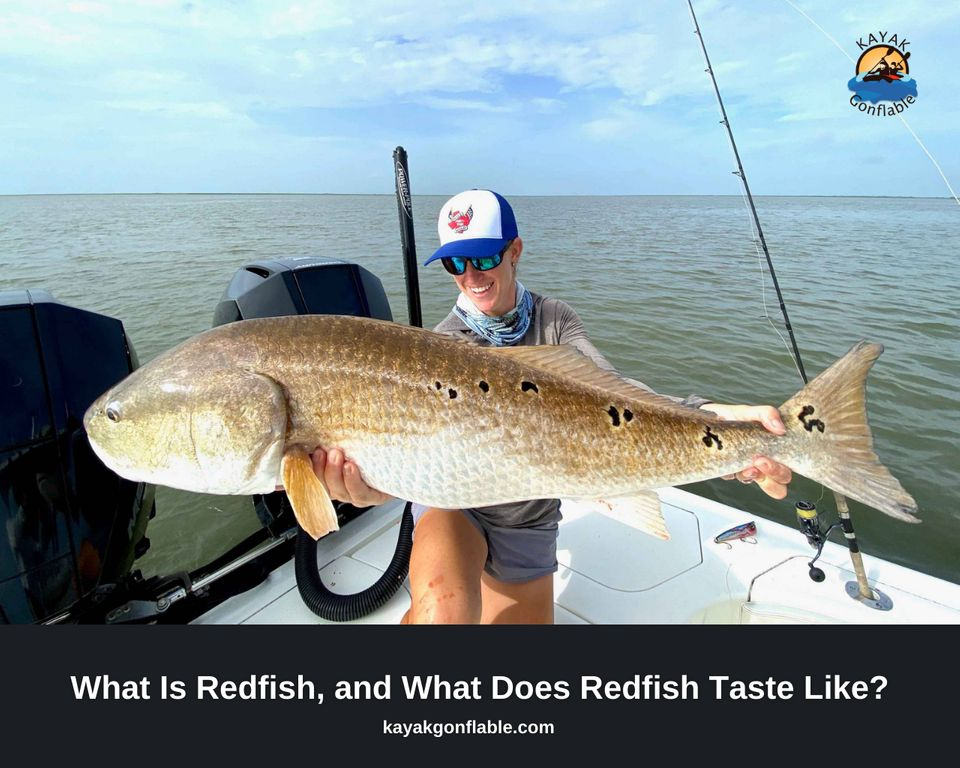 What Is Redfish, and what does redfish Taste like